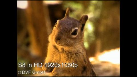 Super8 digitalisieren in HD 1920x1080p. Vergleichen Sie uns: DVF GmbH 0211-742002