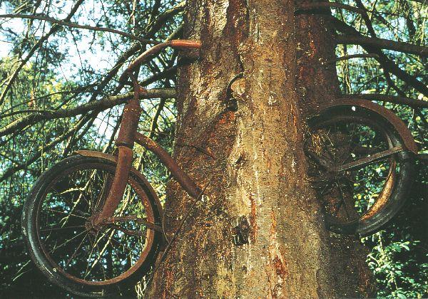 Gobinda-Fahrradrallye