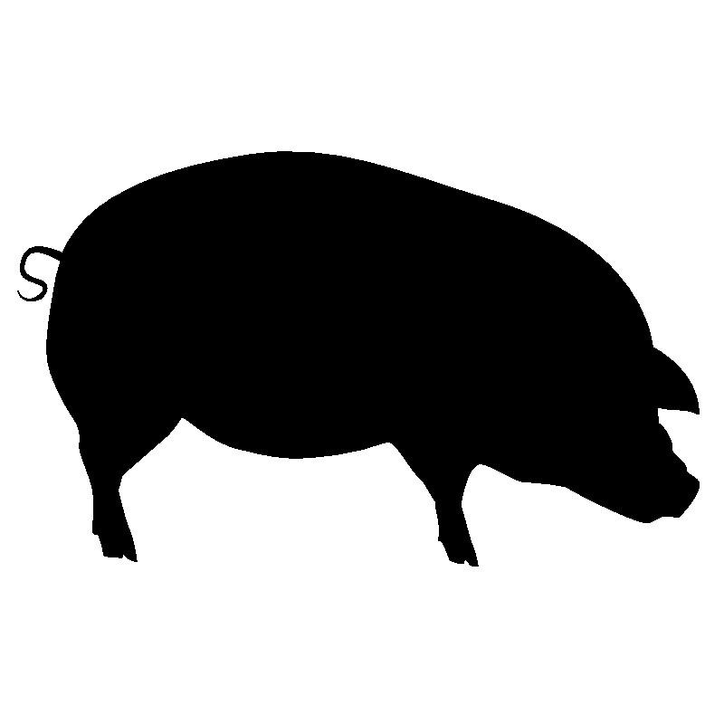 Schweinderlkasse