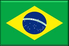 brasileiro (português)