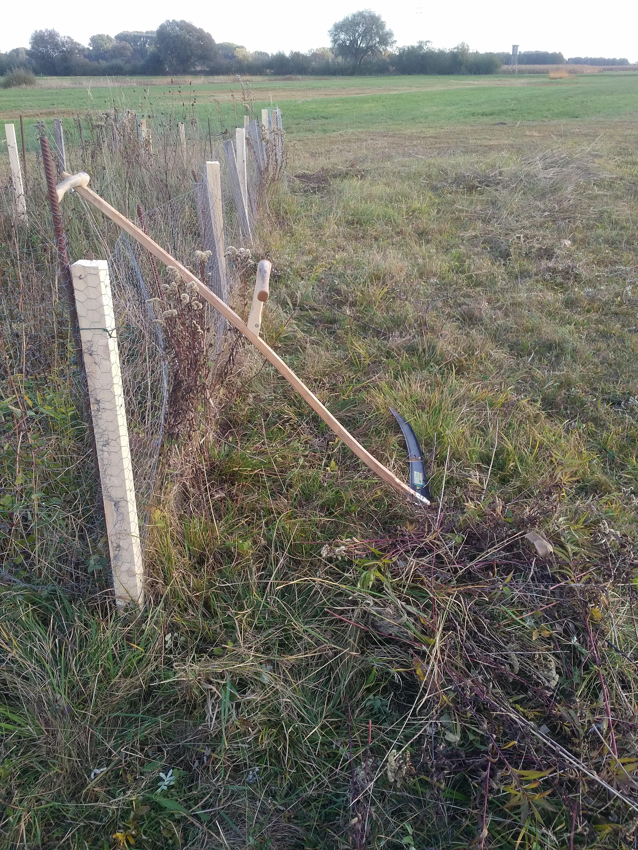 nachher: mit der Mähmaschine kann nahe am Zaun nicht gemäht werden