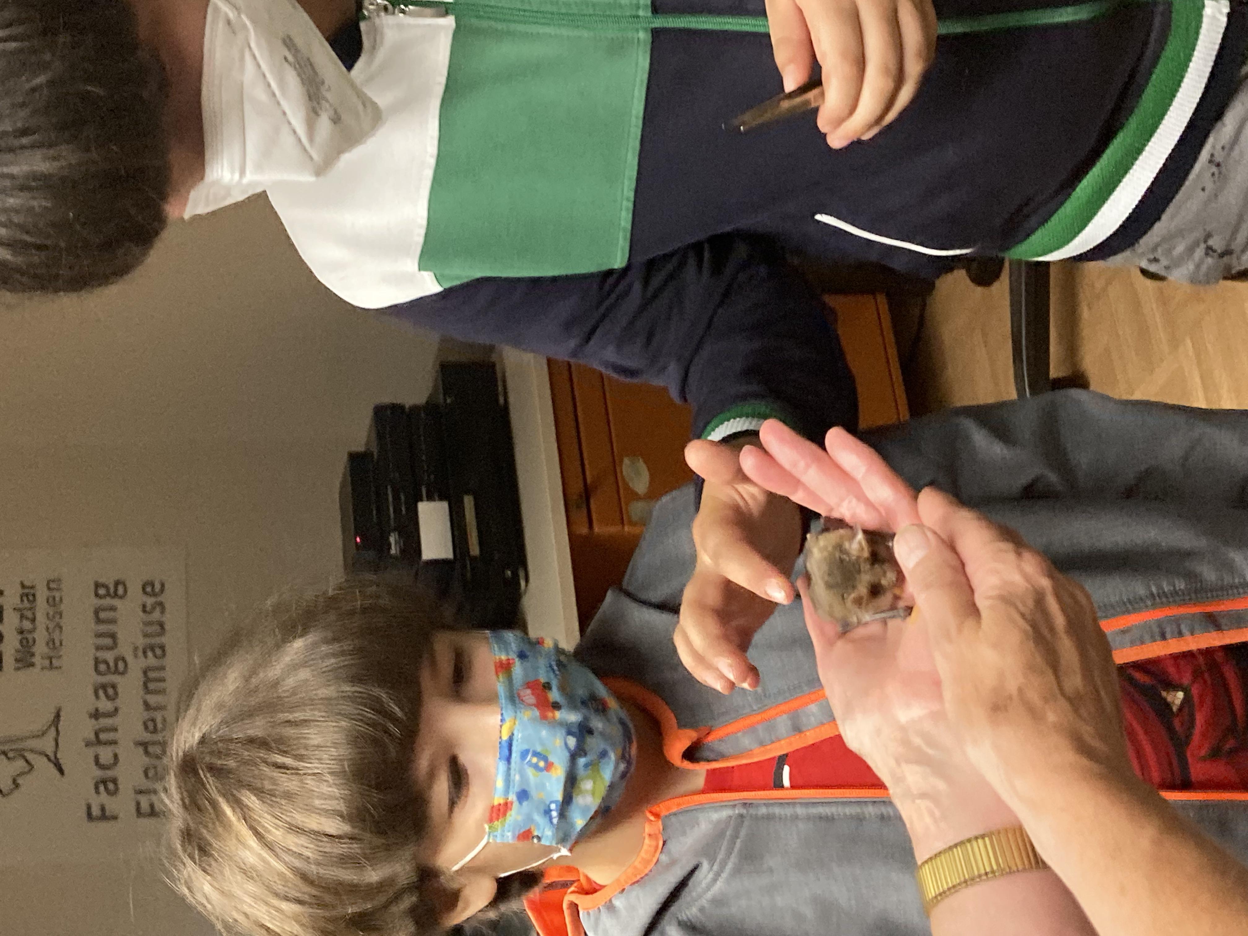 Beim Besuch im Fledermaus-Haus in Greifenstein-Allendorf durften wir eine Fledermaus streicheln und füttern.