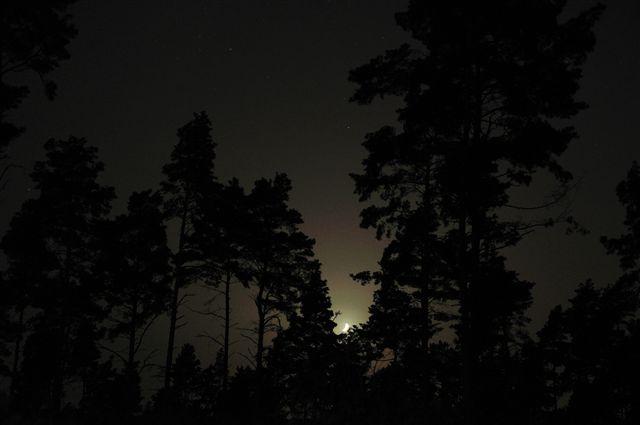 Nachtwanderung bei Mondlicht ....